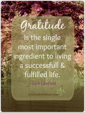3428e828a135dd1d72c1032163b5d8c7--attitude-of-gratitude-gratitude-quotes